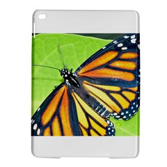 Butterfly 2 iPad Air 2 Hardshell Cases