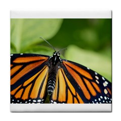 Butterfly 3 Tile Coasters