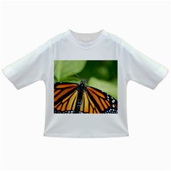 Butterfly 3 Infant/toddler T Shirts