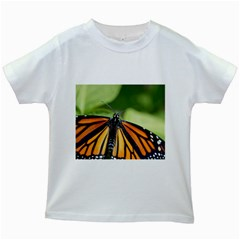 Butterfly 3 Kids White T-Shirts