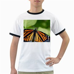Butterfly 3 Ringer T-Shirts