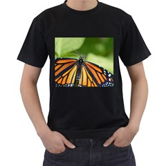 Butterfly 3 Men s T-Shirt (Black) (Two Sided)