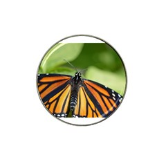 Butterfly 3 Hat Clip Ball Marker (4 Pack)
