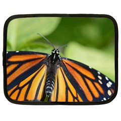 Butterfly 3 Netbook Case (large)
