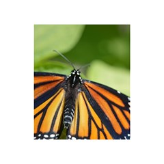 Butterfly 3 Shower Curtain 48  X 72  (small)