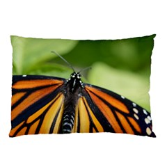 Butterfly 3 Pillow Cases (Two Sides)