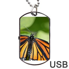 Butterfly 3 Dog Tag Usb Flash (one Side)