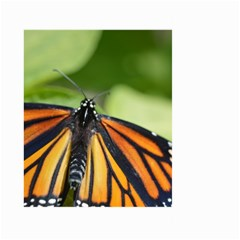 Butterfly 3 Large Garden Flag (Two Sides)
