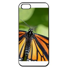 Butterfly 3 Apple Iphone 5 Seamless Case (black)