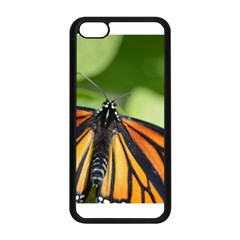 Butterfly 3 Apple Iphone 5c Seamless Case (black)