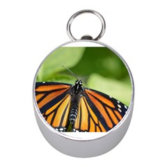 Butterfly 3 Mini Silver Compasses