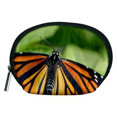 Butterfly 3 Accessory Pouches (medium)