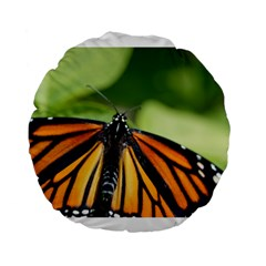 Butterfly 3 Standard 15  Premium Flano Round Cushions