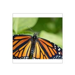 Butterfly 3 Satin Bandana Scarf