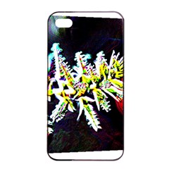Digitally Enhanced Flower Apple Iphone 4/4s Seamless Case (black)