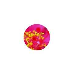 Bright Pink Hibiscus 1  Mini Buttons