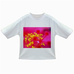 Bright Pink Hibiscus Infant/Toddler T-Shirts