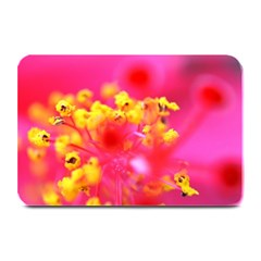 Bright Pink Hibiscus Plate Mats