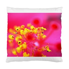Bright Pink Hibiscus Standard Cushion Cases (two Sides)