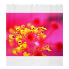 Bright Pink Hibiscus Shower Curtain 66  x 72  (Large)