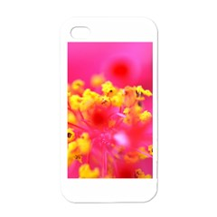Bright Pink Hibiscus Apple Iphone 4 Case (white)