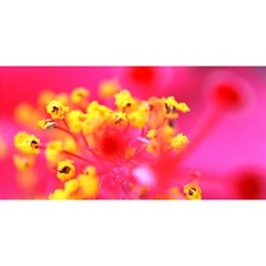 Bright Pink Hibiscus You Are Invited 3d Greeting Card (8x4)