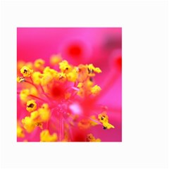 Bright Pink Hibiscus Small Garden Flag (two Sides)
