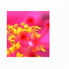 Bright Pink Hibiscus Large Garden Flag (two Sides)
