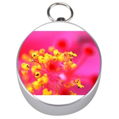 Bright Pink Hibiscus Silver Compasses
