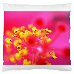Bright Pink Hibiscus Standard Flano Cushion Cases (One Side)