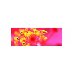 Bright Pink Hibiscus Satin Scarf (Oblong)