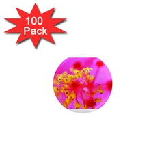 Bright Pink Hibiscus 2 1  Mini Magnets (100 Pack)