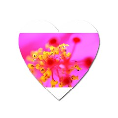 Bright Pink Hibiscus 2 Heart Magnet