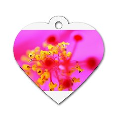 Bright Pink Hibiscus 2 Dog Tag Heart (two Sides)