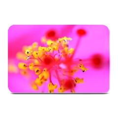 Bright Pink Hibiscus 2 Plate Mats