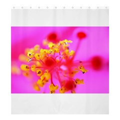 Bright Pink Hibiscus 2 Shower Curtain 66  x 72  (Large)