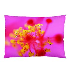 Bright Pink Hibiscus 2 Pillow Cases (Two Sides)