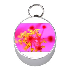 Bright Pink Hibiscus 2 Mini Silver Compasses