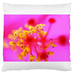 Bright Pink Hibiscus 2 Large Flano Cushion Cases (One Side)