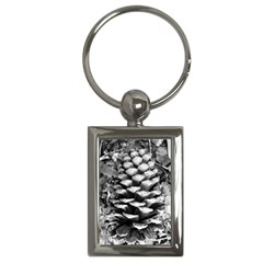 Pinecone Spiral Key Chains (rectangle)