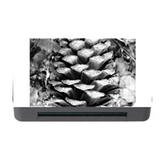 Pinecone Spiral Memory Card Reader With Cf