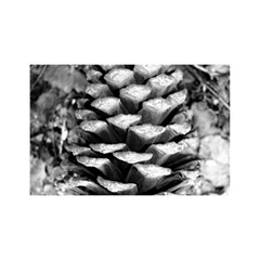 Pinecone Spiral YOU ARE INVITED 3D Greeting Card (8x4)