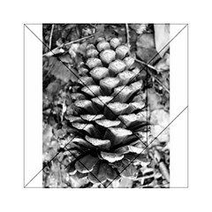 Pinecone Spiral Acrylic Tangram Puzzle (6  X 6 )