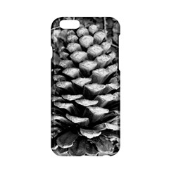 Pinecone Spiral Apple Iphone 6 Hardshell Case