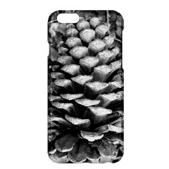 Pinecone Spiral Apple iPhone 6 Plus Hardshell Case