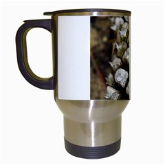 Pincone Spiral #2 Travel Mugs (white)