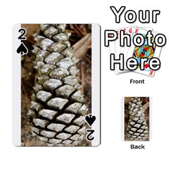Pincone Spiral #2 Playing Cards 54 Designs