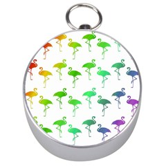 Flamingo Pattern Rainbow  Silver Compasses