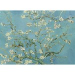 Almond Blossom Tree Peace Sign 3D Greeting Card (7x5)  Back