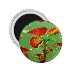 Tropical Floral Print 2 25  Magnets